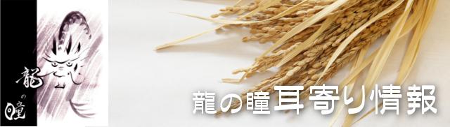レトルト玄米ご飯 プレゼント