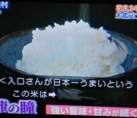 日本テレビ「鉄腕DASH」にて取り上げられました