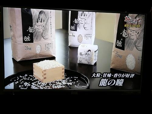 名古屋テレビ│ウドちゃんの旅してゴメン  にて紹介されました。