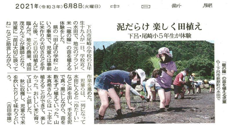 中日新聞|地元小学校田植え体験の様子が取り上げられました。